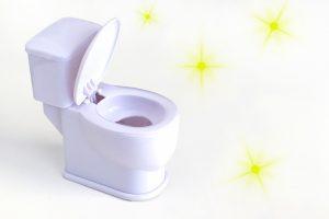 リフォーム後のトイレをきれいに保つ!毎日のお掃除方法と尿石の落とし方をご紹介